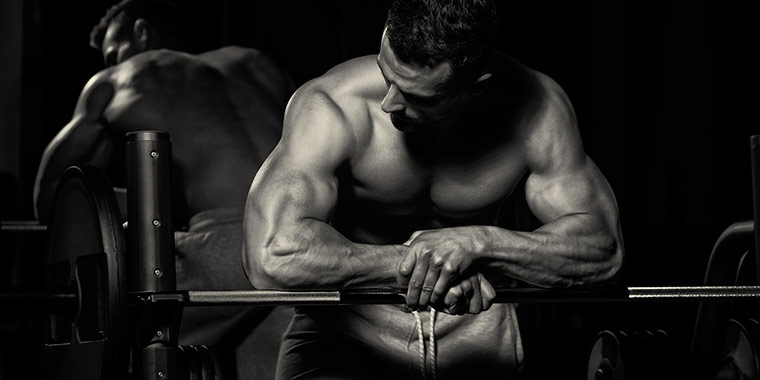 Große Auswahl an hochwertigen Fitnessgeräte